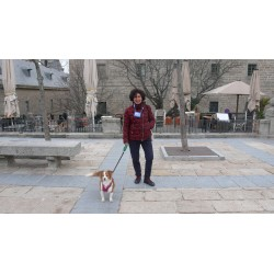 "Visita ""dog friendly"" a El Escorial"