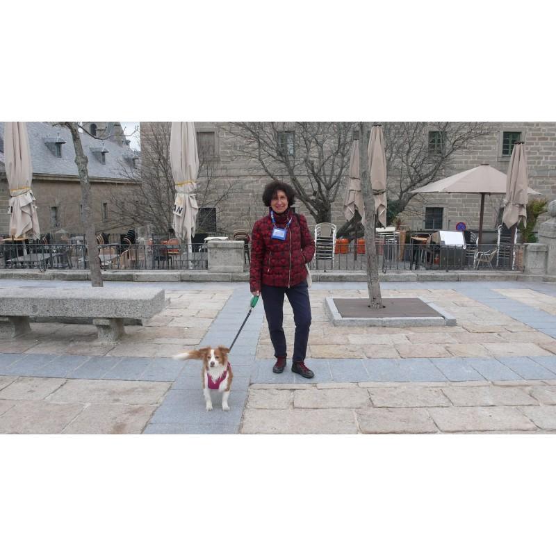 """Visita """"dog friendly"""" a El Escorial"""